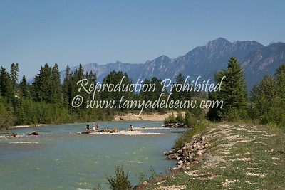 Summer on Toby Creek. Invermere, BC. July 2012