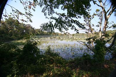 wantagh lake