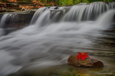 Sulphur Springs WaterfallSouth Chagrin Reservation, Ohio