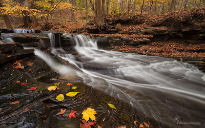 Sulphur Springs South Chagrin Reservation, Ohio