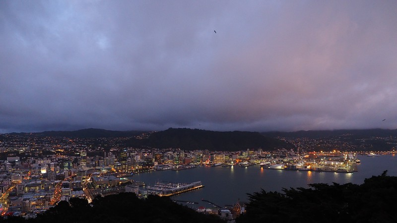 Wellington at dawn - from Mount Victoria (3)