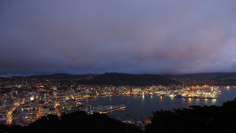 Wellington at dawn - from Mount Victoria (1)