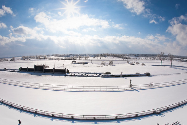 Keeneland Winter Scene 1.30.2009 (EquiSport Photos/Matt Wooley)