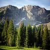 Albion Basin, Utah