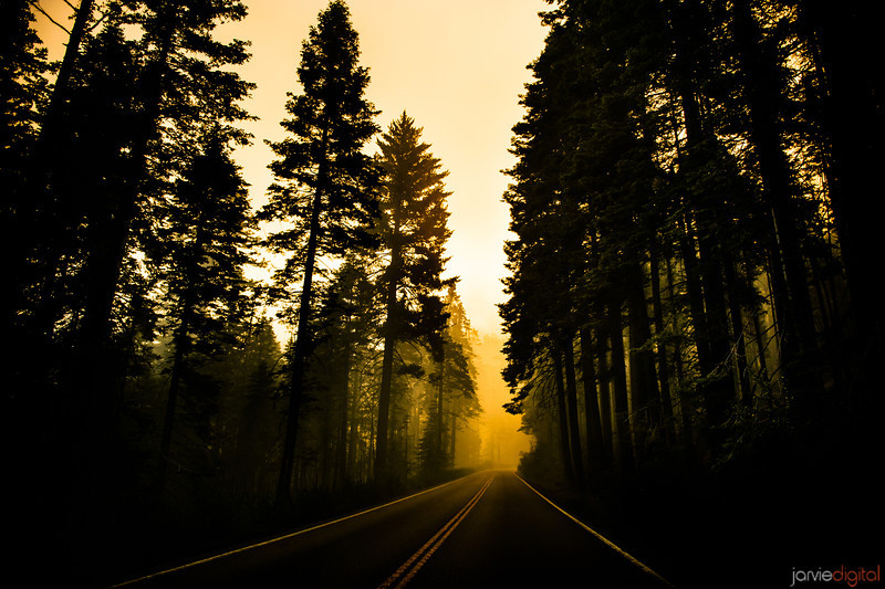A road in Yosemite early morning is on alert due to yearly fires burning close by.