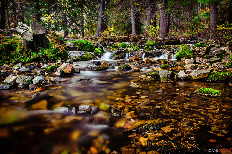 A mountain stream comes down American Fork canyon in Utah.