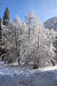 Yosemite-2012