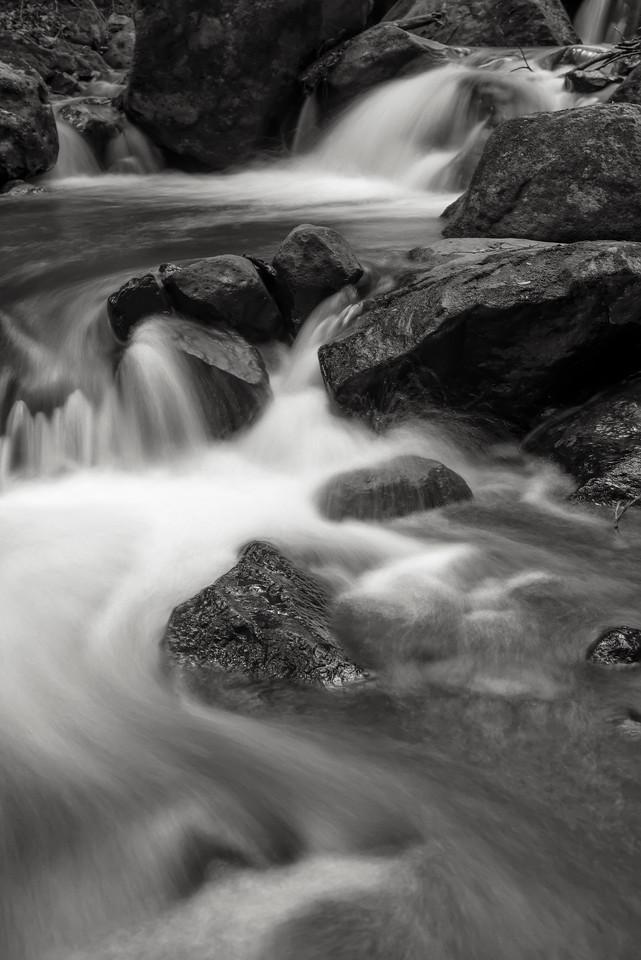A Stream in Rincon de la Vieja, Costa Rica