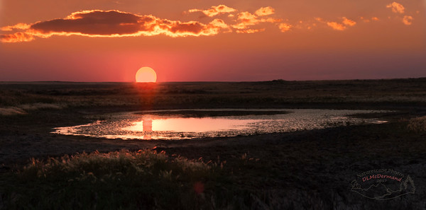 Sunset on a Prairie Pothole