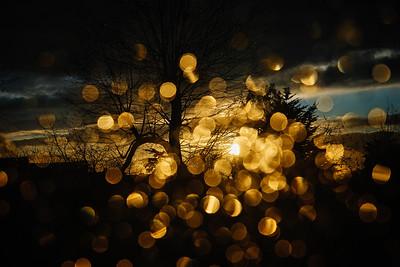 Rain Drops At Sunset