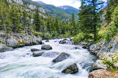 Raging Mountain Stream