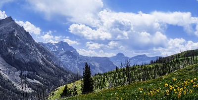 Beartooth Mountains at Daisy Pass