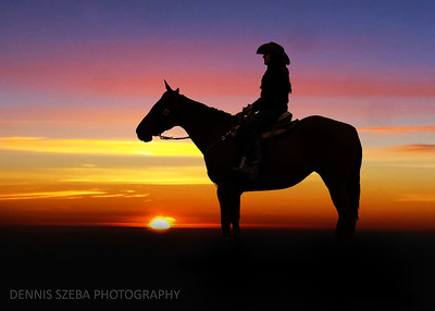 Montana Morning rider