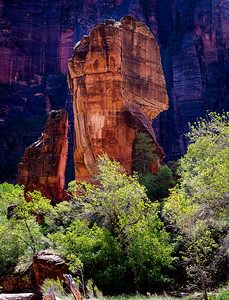Temple Of Sinawava Zion National Park, Utah