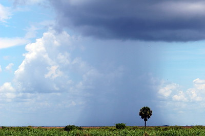 Storm over Lake Okeechobee