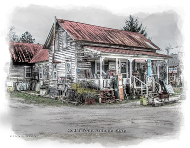 Grapevine Antique store in Cedar Point, NC