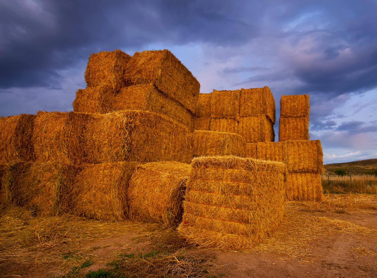 Colorado Hay