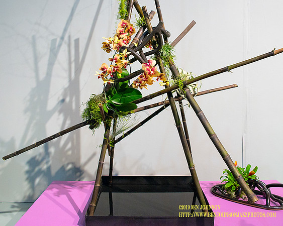 The Philadelphia Horticultural Society Presents The 2019 Philadelphia Flower Show 'Flower Power'