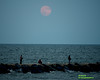 Super Moon August 29, 2015 Viewed over the ocean in Atlantic City New Jeresy