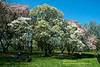Shofuso Japanese House And Garden Philadelphia