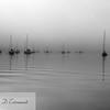 Belfast Harbor sunrise (black and white)