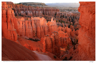 Bryce Canyon - Sunrise Glow