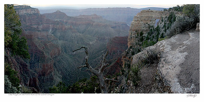 Grand Canyon - Cape Royal