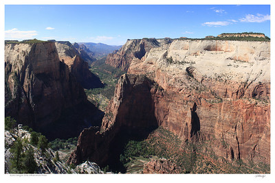 Zion - Observation Point