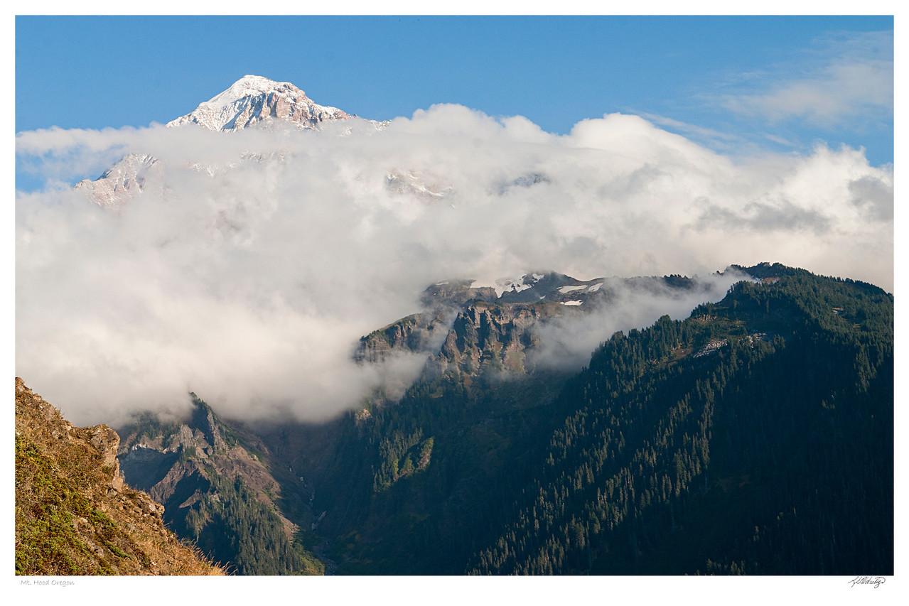 Mt. Hood OR
