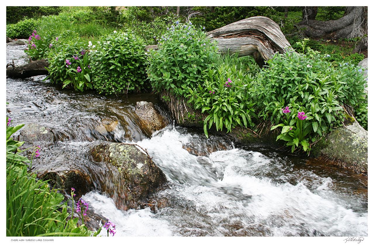 Creek near Isabelle Lake CO