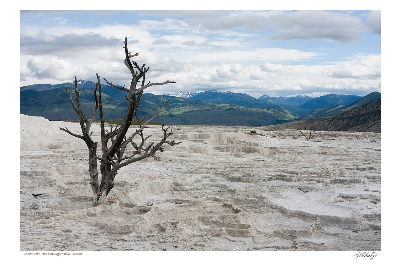 Mammoth Hot Springs, Yellowstone Park, WY