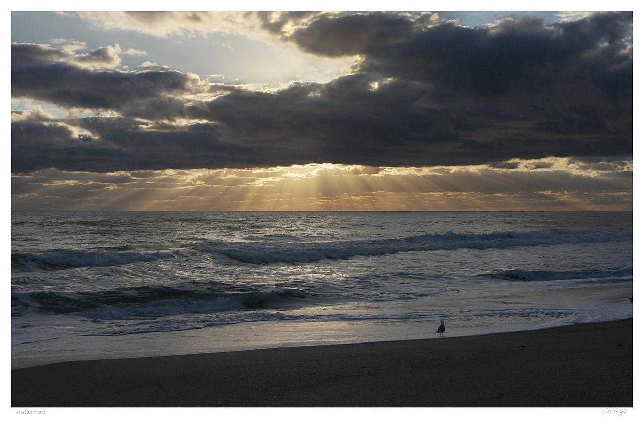 Florida Coast near Vero Beach