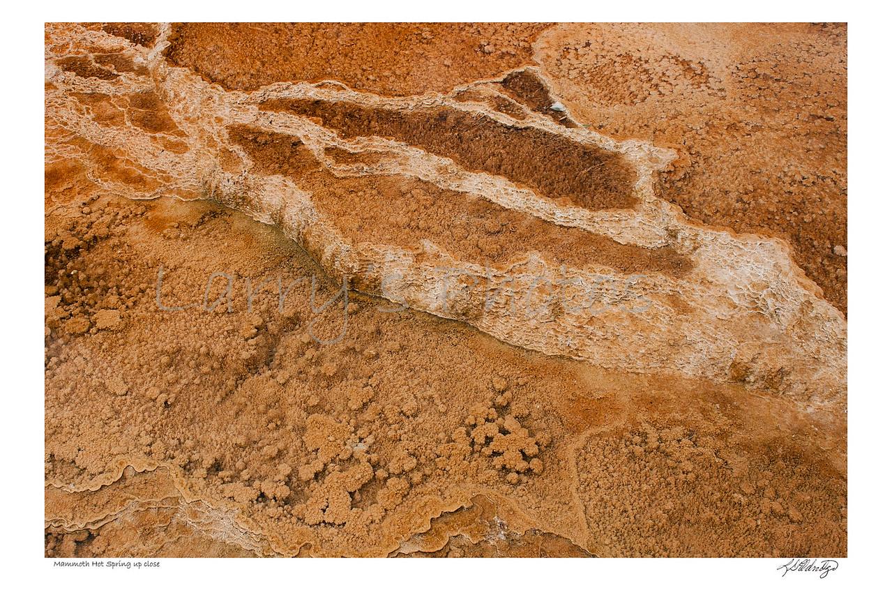 Mammoth Hot Spring up Close, Yellowstone Park, Wyoming