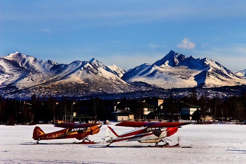 Super Cubs on skis, Lake Hood, Alaska.