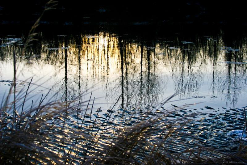 Reflection in the tidal mud flats, Turnagain Arm, Alaska.