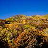 Wasatch Mountains, Utah.