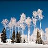 Skiing at Park City Mountain Resort, Park City, Utah.