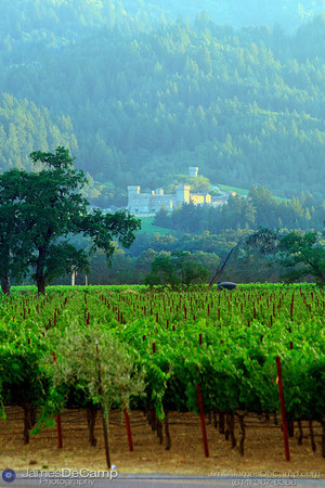 Napa Valley, California (© James D. DeCamp | http://www.JamesDeCamp.com | 614-367-6366)