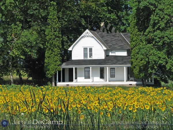 20110808MapleBayfarmhousesunflowersER