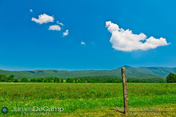 Scenes in and around the Great Smoky Mountains National Park's Cades Cove area in Tennessee photographed Wednesday, July 27, 2011. (© James D. DeCamp | http://www.JamesDeCamp.com | 614-367-6366)