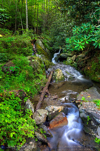 Scenes in and around the Great Smoky Mountains National Park's River Road area in Tennessee photographed Wednesday, July 27, 2011. (© James D. DeCamp | http://www.JamesDeCamp.com | 614-367-6366)