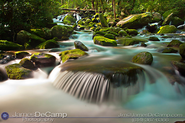 Scenes in and around the Great Smoky Mountains National Park's Roaring Fork Motor Nature Trail Tennessee photographed Thursday, July 28, 2011. (© James D. DeCamp | http://www.JamesDeCamp.com | 614-367-6366)