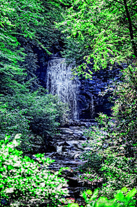 Scenes in and around the Great Smoky Mountains National Park's Roaring Fork Motor Nature Trail Tennessee photographed Friday, July 29, 2011. (© James D. DeCamp | http://www.JamesDeCamp.com | 614-367-6366)