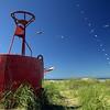 Beached Buoy & Kites.