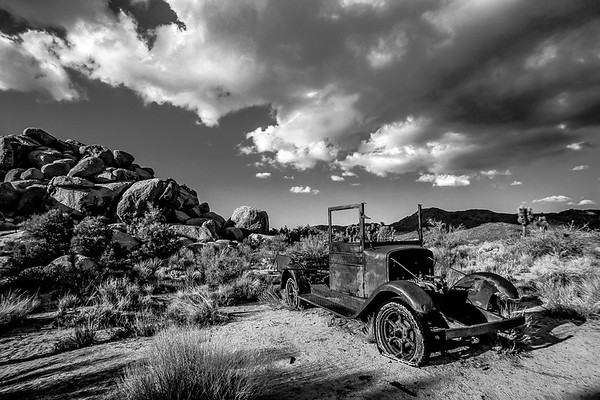Last Ride Home in Black and White, Joshua Tree National Park