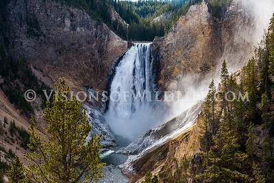 Lower Yellowstone Fllas