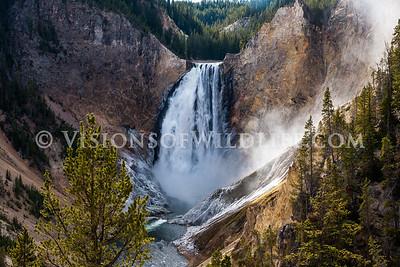 Lower Yellowstone Fllas