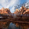 These bare cottonwoods watch over the Virgin River, the driving force that carved the valley through Zion's sandstone bluffs.