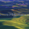 A view of the rolling farmland of Washington state's Palouse area from Steptoe Butte near Colfax.