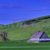 A barn along the highway between Colfax and Spokane in Washington's Palouse farming country.